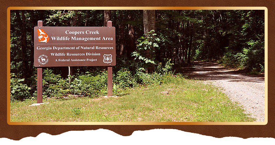 Coopers Creek Trails